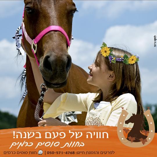 חוות סוסים פרח בכרמים